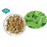 Buy cheap Astragalus Root Herbal Supplements Hard Capsule For Support Immune System from wholesalers