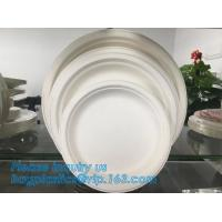 Buy cheap Compostable biodegradable dinner plate corn starch plate,Elegant Disposable Corn Starch Bio Plastic Dinner Plates bagpla from wholesalers