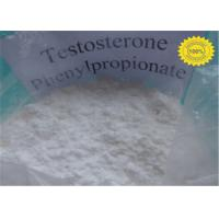 Buy cheap Androgens Testosterone Steroid Hormone Testosterone Phenylpropionate from wholesalers