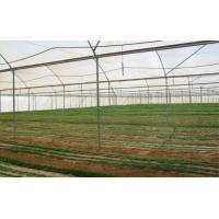 Buy cheap Customized Insect Mesh Netting Hail Damage Protection 30 To 125 G/M2 Weight product