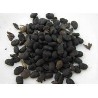 Buy cheap Malaytea Scurfpea Fruit Extract,Fructus Psoraleae Extract,Psoralea Corylifolia Extract from wholesalers