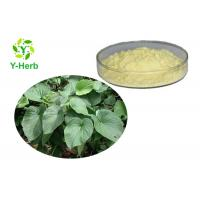 Buy cheap Water Insoluble Kavalactone Extract 30% 50% 70% Fiji Kava Kava Root Extract Powder from wholesalers
