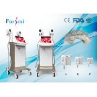 Buy cheap Laser body sculpting triple cooling system Cryolipolysis Slimming Machine FMC-I Fat Freezing Machine from wholesalers