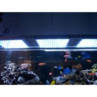 Buy cheap LED Aquarium light -90W from wholesalers