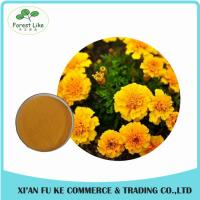Buy cheap Eye Health Product  Marigold Powder Extract  Lutein 5 % - 20 % from wholesalers