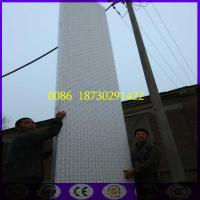 China 6 mtr length 3D EPS Steel Mesh Wall Panel on sale