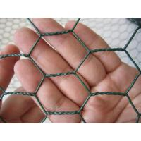 Plastic Welded Hexagonal Wire Netting 1 Inch With Hot Dipped Galvanized Steel