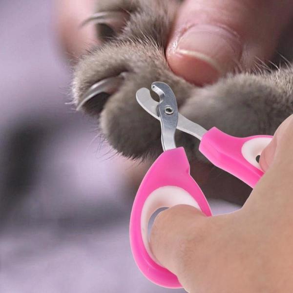 Buy cheap Pink Color Pet Nail Scissors , Pet Pedicure Nail Grinder Ergonomic Design from wholesalers