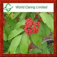 Buy cheap 100% natural wild Elderberry Extract 5%-70% Anthocyanin for anti-oxidation from wholesalers