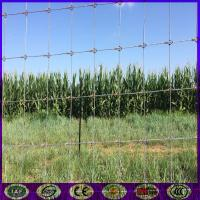 Buy cheap China high quality strong field farm deer fence weaving machine product