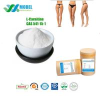 Buy cheap L Carnitine Weight Loss Ingredients , Levocarnitine Injection For Weight Loss CAS 541 15 1 from wholesalers