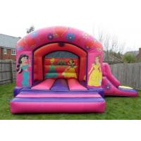 Buy cheap Inflatable Combo Princess Bounce House Little Tikes Bouncer With Slide from wholesalers