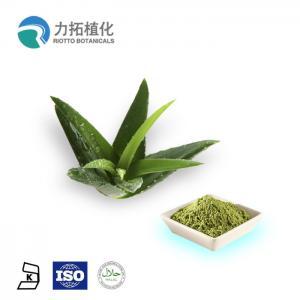 China Organic Plant Extract Powder Aloe Vera Extract Powder 10x 200x Emodin 98% on sale