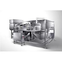 Buy cheap Anysort Sea Salts Color Sorter , Channel Type Salt Sorting Machine from wholesalers