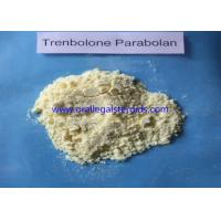 Muslce Building Trenbolone Powder Pale Yellow Trenbolone Hexahydrobenzylcarbonate