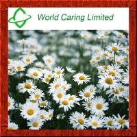Buy cheap Herbal Extract Chamomile Extract Apigenin 1.2%-98% HPLC for cosmetics product