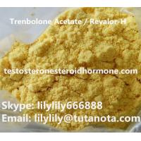 Buy cheap Safe Trenbolone Steroid Trenbolone Acetate Revalor-H CAS 10161-34-9 Injection Powders from wholesalers