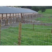 Buy cheap High Tensile Field Fence – Strong yet Light Weight product