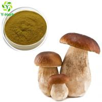 Buy cheap 10%-50% Natural Boletus Extract Porcini Powder from wholesalers