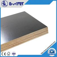 Buy cheap Film-coated Plywood, 9mm Hardwood Core WBP Glue 2-time Hot Press from wholesalers