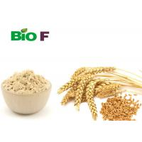 Buy cheap Food Additives Pure Plant Protein Powder , Water Soluble Wheat Protein Powder from wholesalers