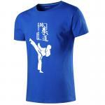 Buy cheap Custom printing men taekwondo funny gift t shirts in bulk Martial arts taekwondo polo shirt 100% cotton from wholesalers
