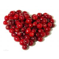 Buy cheap high quality cranberry fruit powder sample free--Cranberry juice from wholesalers