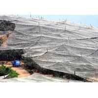 China China Factory Wholesale Plastic Anti Hail Net/Insect Net Mesh Plant Covers for Greenhouse on sale