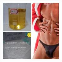 CAS 315-37-7 Testosterone Enanthate Injectable Steroids For Muscle Building Test E