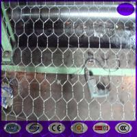 Buy cheap 72 x 150' ft 1 Mesh Galvanized Poultry Netting Chicken Wire Fence from wholesalers