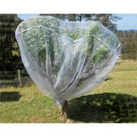 Buy cheap Fruit Tree Net, 20-50mesh,0.5-6.0m,green and white,protect the trees product