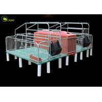 Buy cheap Double Pig Farrowing Crate , Free Stall Farrowing Pens OEM Service from wholesalers