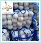 Buy cheap High Quality Fresh Pure White Garlic, Purchase Garlic Jinxiang Fresh Red Garlic Factory from wholesalers