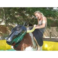 Buy cheap Inflatable Bull Rodeo product