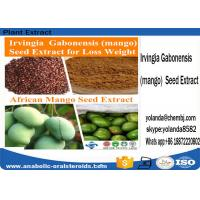 Buy cheap Yellowish Brown Powder Mango Seed Extract  / Irvingia Gabonensis Extract for Weight Loss from wholesalers