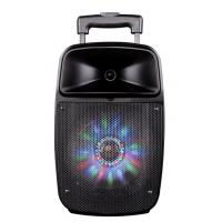 Bluetooth Function Rechargeable Portable Trolley Speakers With Led Lights