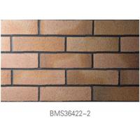Low Water Absorption Exterior Thin Brick Durable For Real Estate