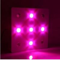 Buy cheap Square Indoor Lighting LED Grow Lights for Plant Grow 650W from wholesalers