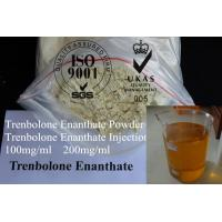 trenbolone nutrient partitioning