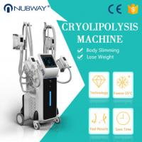 Buy cheap factory price 4 handles -15oC Vacuum cryolipolysis fat reduction machine from wholesalers