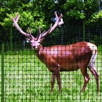 Buy cheap Virgin HDPE plastic deer fence netting /deer fencing for sale from wholesalers