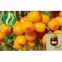 Buy cheap Organic seabuckthorn berry oil from wholesalers