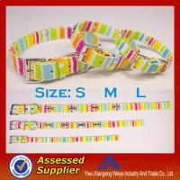 Buy cheap Promotional item chromatic stripe dog collars and leashes with hight quality from wholesalers