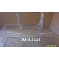 Buy cheap Folding Larsen Magpie Traps from wholesalers