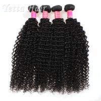 Quality Kinky Curly Burmese Virgin Hair Bundles , No Tangle Real Wavy Hair for sale
