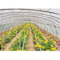 Buy cheap Mulch Jumbo Rolling Plastic Greenhouse Film With High Impact Resistance from wholesalers