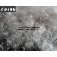 Buy cheap China High quality 5%~95% Grey Duck down and feather from wholesalers