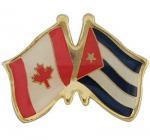 Buy cheap Canada flag metal Custom Badges , sandblasted flag pin badge from wholesalers