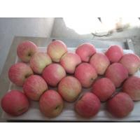 Buy cheap Fresh Fuji Apples from wholesalers