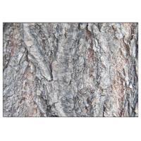 Salicin 98% White Willow Bark Extract Powder Anti Fungal Natural Ingredient